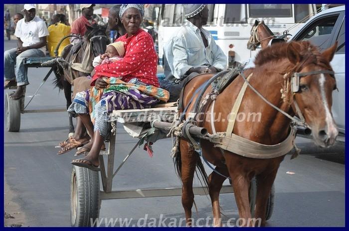 Sénégal new look: Sondéle, Puits, Sarétte... de retour dans nos comportements