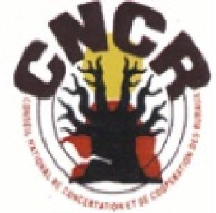 Babacar Cissé, conseiller en communication du CNCR: «La commercialisation a connu une baisse terrible.»