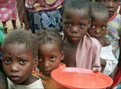 Le monde rural face à une forte pénurie de céréales: La famine menace dans le département de Mbour