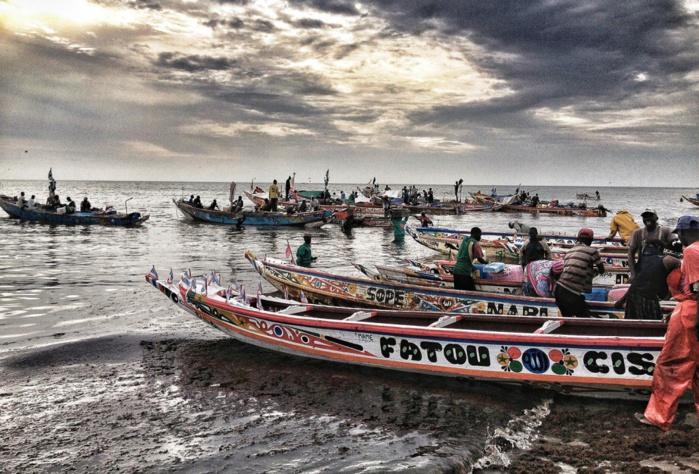 Guinée Bissau : Arraisonnement de neuf pirogues sénégalaises