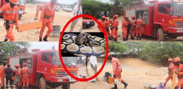 Las Palmas : La police et les sapeurs-pompiers au chevet de ce mystère.