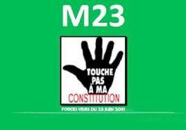 """le M23 évoque un """"plan de riposte"""" contre la candidature de Wade"""