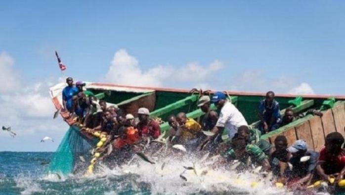 Fleuve Casamance / Un nouveau chavirement de pirogue fait un disparu et deux pêcheurs rescapés.