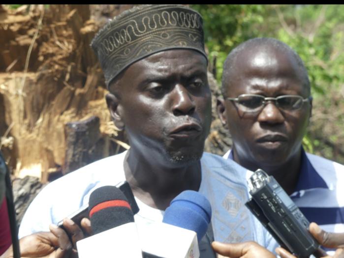 Casamance / Yancouba Sagna, Maire de Sindian : «Les coupeurs de bois opèrent entre 17 heures et 20 heures»