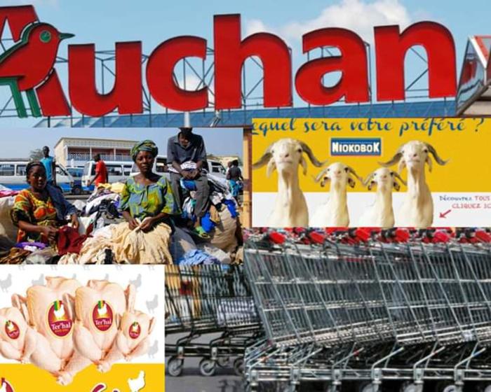 Les Géants de la grande distribution française au Sénégal ou signe d'une Économie Extravertie (Par Maimouna Saïdou Dia)