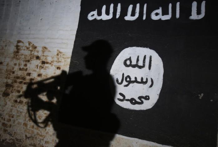ENTRETIEN / Matteo Puxton, spécialiste de la propagande militaire de Daesh : « L'Etat Islamique a vu une partie de son avenir sur le continent africain »