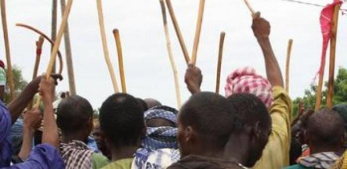 Podor : Des affrontements entre agriculteurs et éleveurs font un mort.