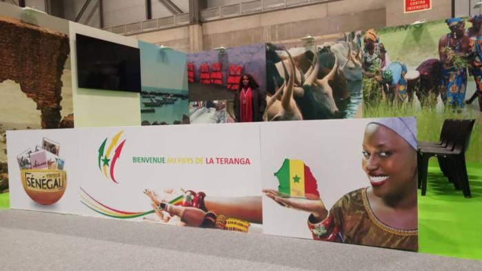 Le Sénégal à la COP 25 : Une délégation plurielle d'experts et des collaborations en vue