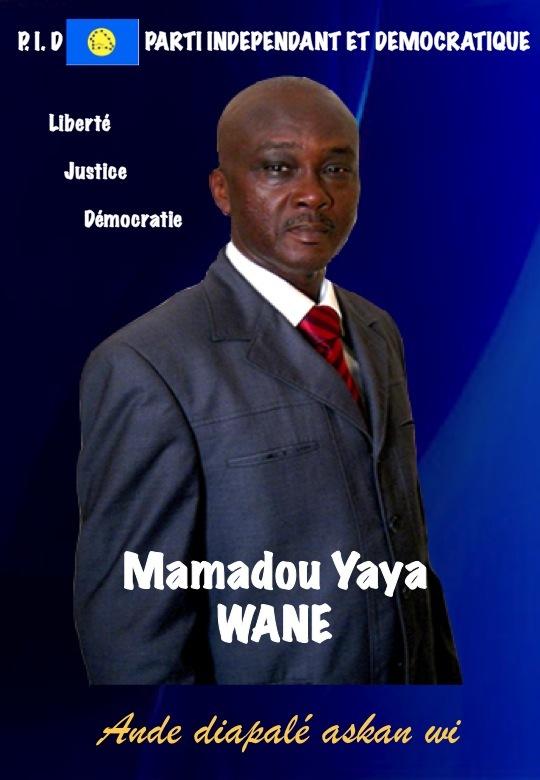 La problématique de la Transhumance Politique au Sénégal (Mamadou Yaya WANE)