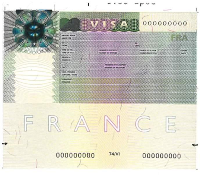 Sénégal :Doit-on manifester pour un visa d'entrée en France ? (Par Cheikh Yérim Seck)