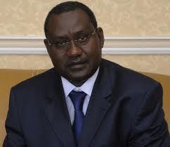 Bara Sady, la vache laitière de la Présidence et du ministère de l'Economie maritime de l'époque.