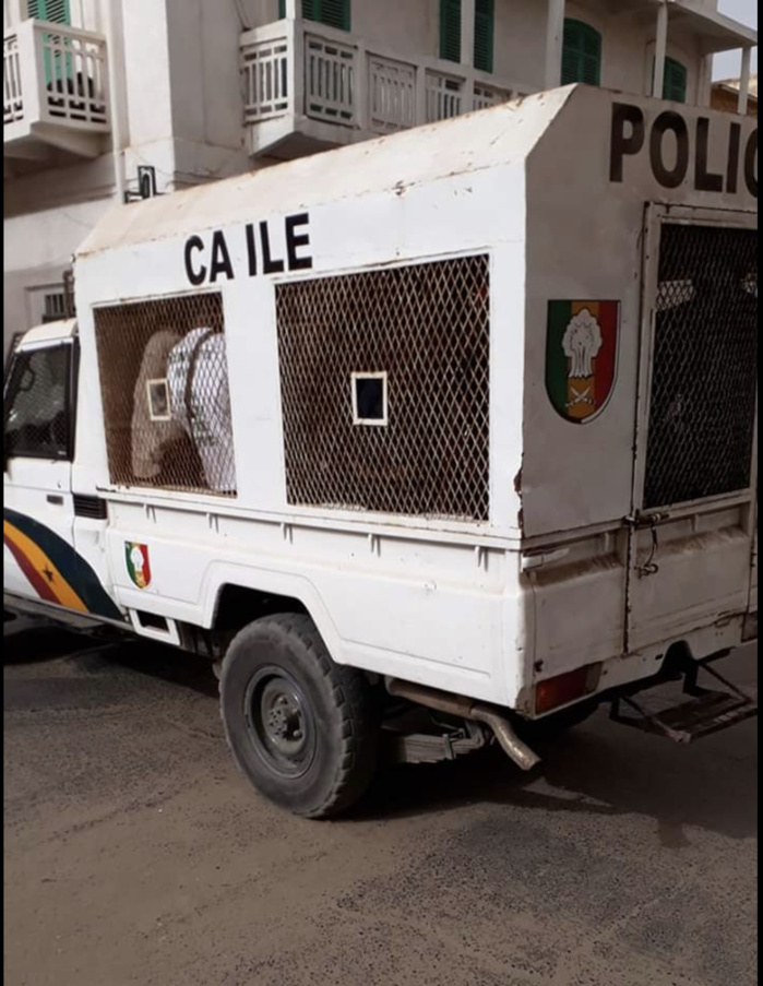 Saint-Louis : Quatre (4) membres du collectif «Faidherbe va tomber», arrêtés...