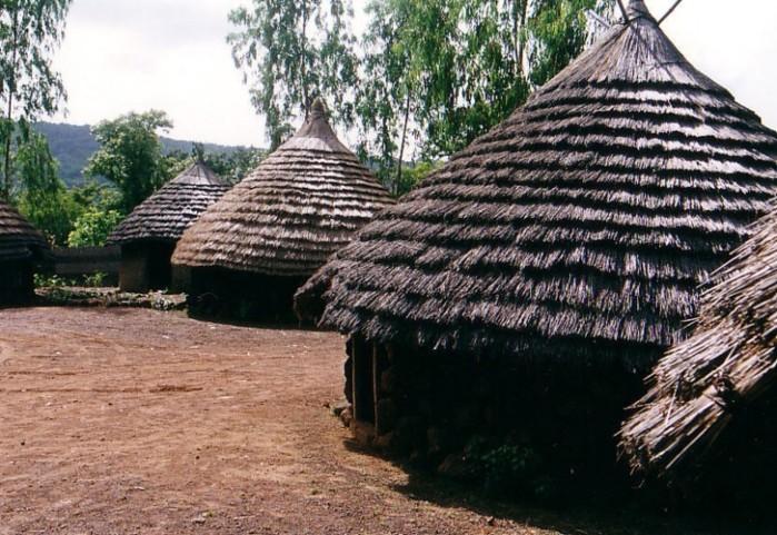 Quel est ce mal qui frappe le village de Gognon ?