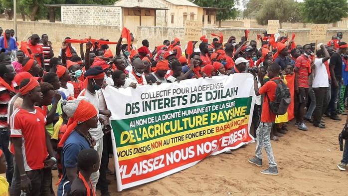 Foncier : Les populations de Djilakh tournent en dérision la conférence de presse de Babacar Ngom et appellent à une marche nationale à Dakar le 17 juillet.