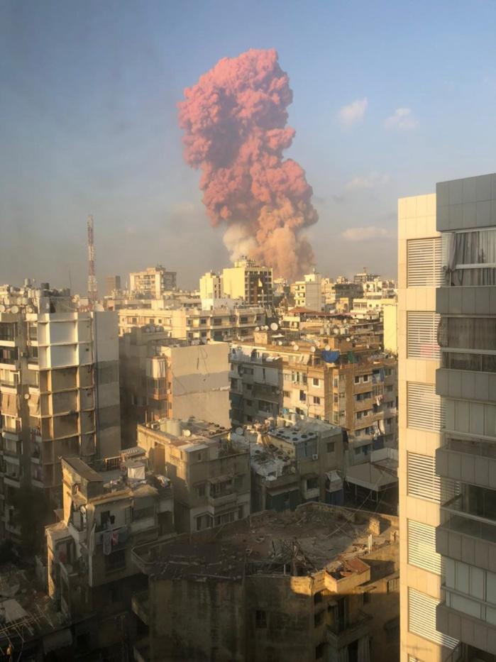 Explosion meurtrière à Beyrouth : Démission de la ministre de l'information suivie de celle du ministre de l'environnement