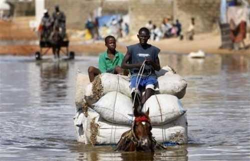 Drame à Tawa (Ndiaffate) : Un jeune homme de 20 ans emporté par les eaux pluviales.