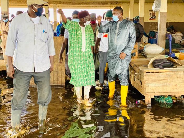 Pluies torrentielles : Le ministre de l'élevage au chevet des vendeurs de bétail et de grands ruminants de Diamagueuène et Sotiba.
