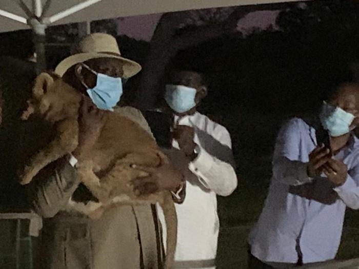 Fatala : Le président Macky Sall porte un lionceau sur ses épaules.
