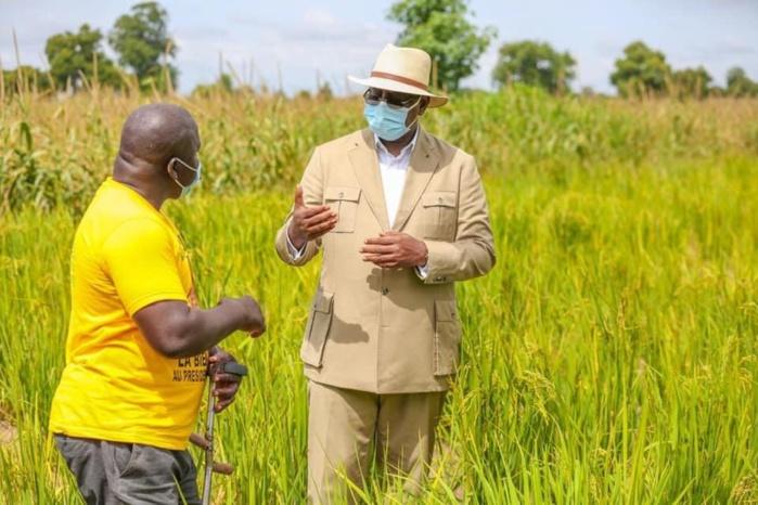 TOURNÉE  PRÉSIDENTIELLE / L'APR salue l'idée du Chef de l'État de faire de la sécurité alimentaire «un axe majeur du PAP2 ajusté et accéléré»