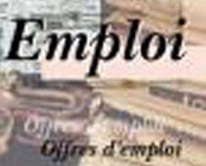 L'EMPLOI DES JEUNES AU SENEGAL