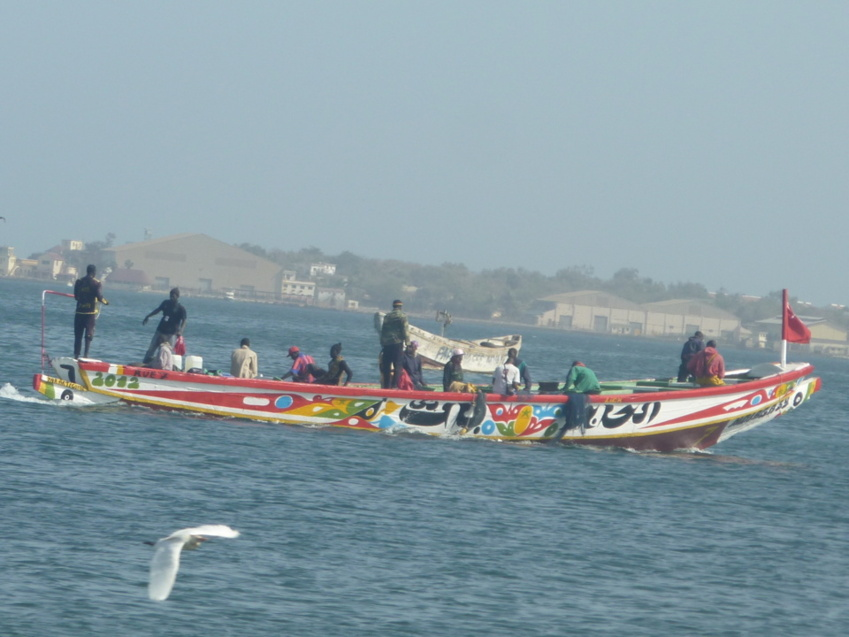 L'impact de la suppression de la vignette automobile sur le secteur de la pêche artisanale