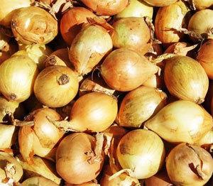 Gel des importations d'oignons du 10 février au 31 août
