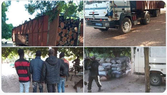 Trafic de bois : saisie d'un camion transportant du bois et d'un minibus chargé de 85 sacs de charbon vers Niankit