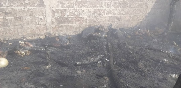 Grave incendie à Lour Escale (Koungheul) : Plusieurs sacs d'arachide et 16 moutons consumés.
