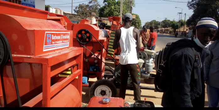 Campagne agricole à Kolda : mécanisation, commercialisation et satisfecit des producteurs…