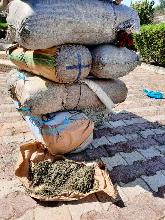 Kaolack-Fatick : La gendarmerie intercepte 263 kg de chanvre indien débarqués au quai de Sibassor à destination de Fissel.