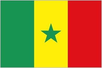 Le civisme ou la citoyenneté, vu sous l'angle du respect des codes en général au Sénégal