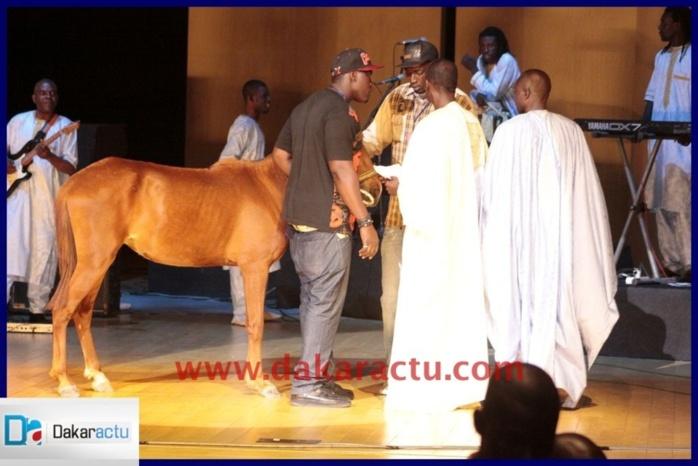 En plus de l'argent et des tissus, voici le cheval offert à Coumba Gawlo par Serigne Mbacké Ndiaye