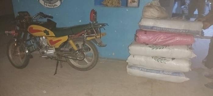 SÉDHIOU : 70 Kg de chanvre indien saisis encore par la gendarmerie.