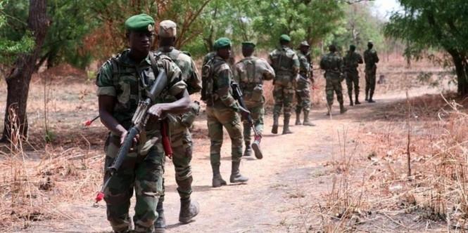 Diouloulou : L'armée a détruit des champs de yamba et arrêté trois individus.