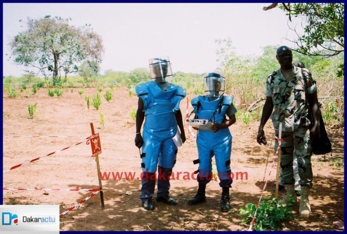 Casamance : Le CICR au chevet des 12 démineurs pris en otage