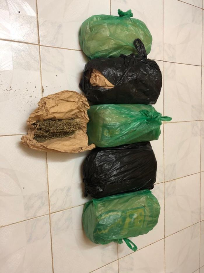 DIOURBEL / La Brigade des Stupéfiants démantèle 03 filières de trafic de chanvre indien et saisit 5,41 kgs.