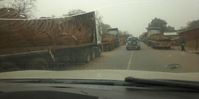 KOLDA : Conséquences de la fermeture de la frontière guinéenne en ce mois de Ramadan…