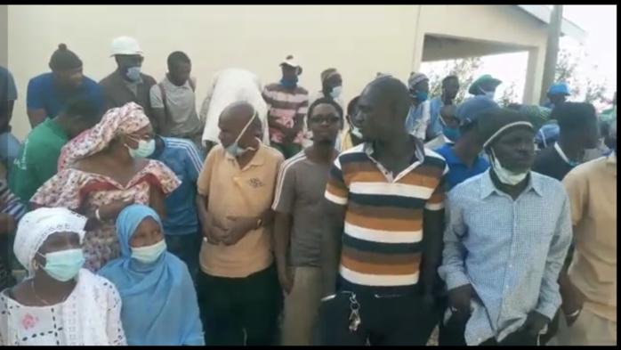 Salins du Sine-Saloum : Les travailleurs assiègent la direction générale et réclament des avances Korité.
