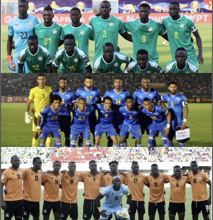 Football / Matchs amicaux : Les Lions affronteront la Zambie puis le Cap-Vert au mois de juin prochain.