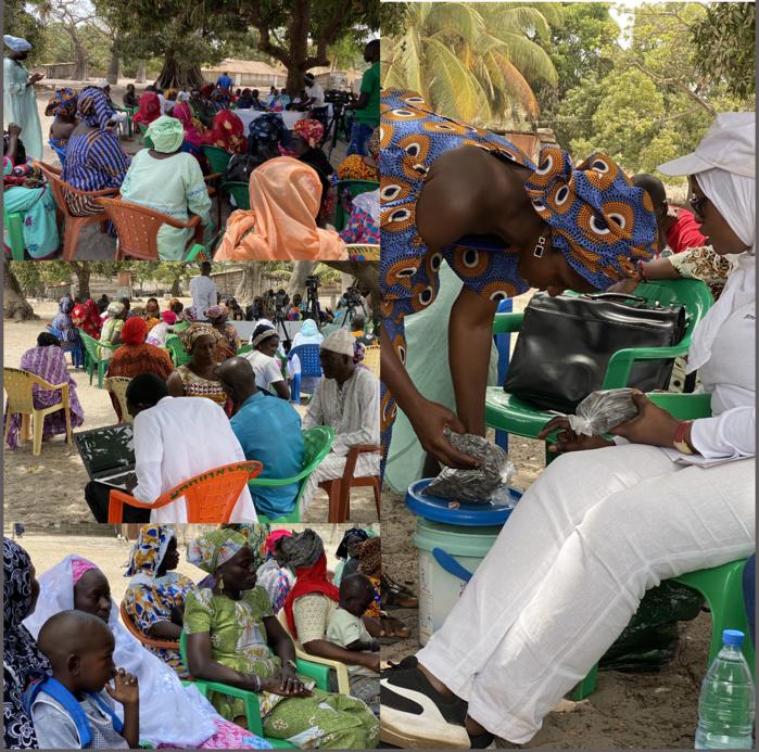 Basse-Casamance / Île Karabane : Les femmes et les artisans exposent leurs difficultés au ministère de la microfinance.