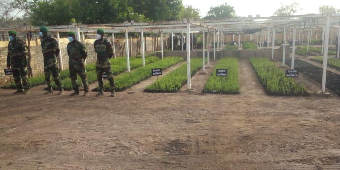 Lutte contre le plastique : Tambacounda cité comme « bon élève » par le ministre de l'environnement.