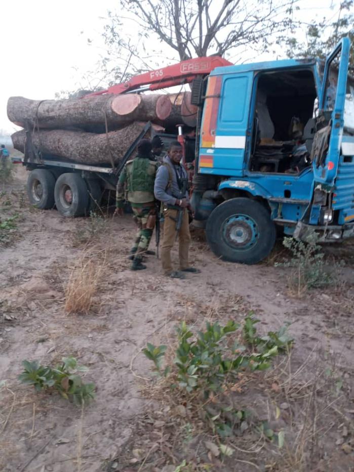 Bignona : 01 civil tué dans une attaque contre des agents des eaux et forêts