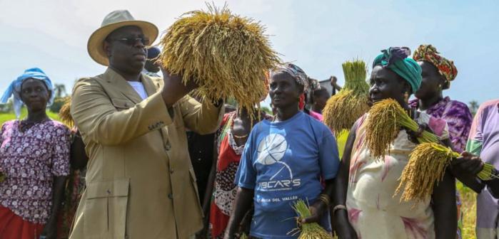 INITIATIVE MAJEURE DE MACKY SALL : désormais, femmes et jeunes agriculteurs peuvent s'équiper sans débourser un franc