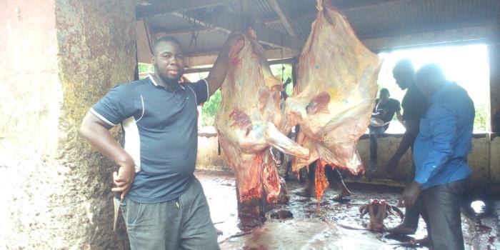 Pénurie de viande à Kolda : Rareté et cherté de la viande, bouchers et tannerie en sursis…