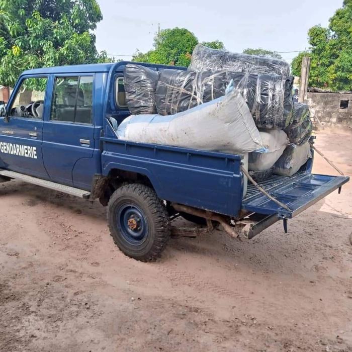 KOLDA : La brigade régionale des stupéfiants a saisi 117 kg de chanvre indien.