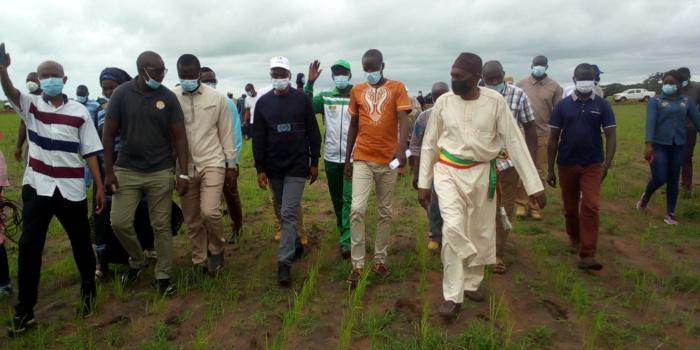 Campagne de suivi agricole / Moussa Baldé (MAER) à Sédhiou : «Je pense que de façon globale l'agriculture se portent très bien… Tout le monde se rappelle de cette belle image… »