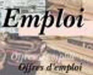 L'Offshoring une piste sérieuse pour un marché de milliers d'emplois au Sénégal
