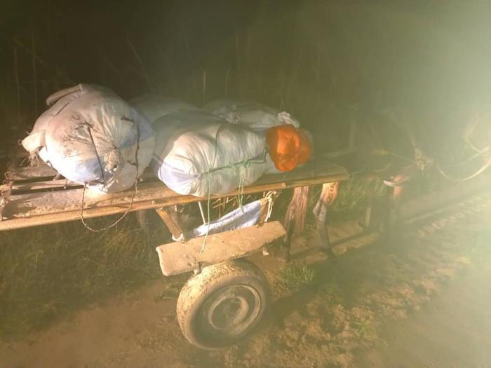 Douane : importante saisie de chanvre indien à Kaolack.