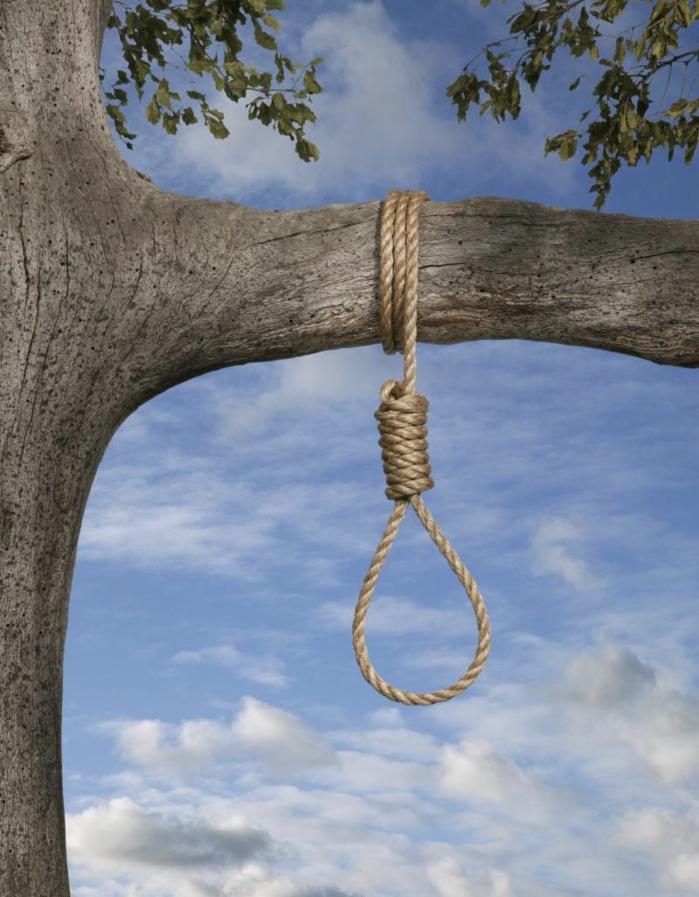 DRAME À JAXAAY : Un étudiant de 24 ans retrouvé pendu à un arbre.
