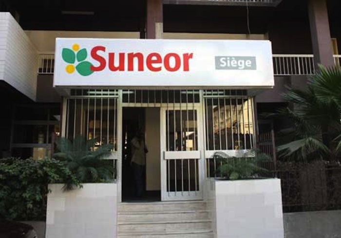 Dettes et pertes de 50 milliards : Suneor au bord de la faillite.